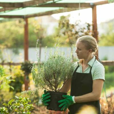 Woman carrying a potted plant in a nursery | Garden center design